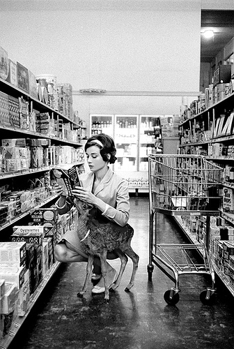 "Audrey Hepburn shopping in Beverly Hills with her pet deer and costar, Pippin, known as ""Ip."" (1958)"