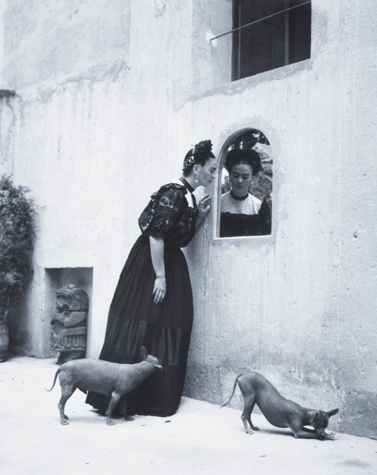 Frida and the Fire Dogs | Lisa's History Room