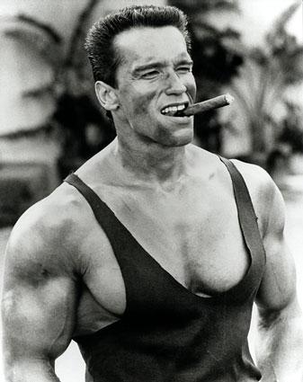 Arnold Schwarzenegger I Have